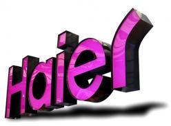 海尔品牌连锁平面发光字