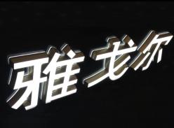 雅戈尔品牌连锁形象墙迷你字